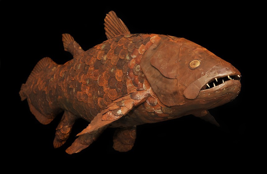Coelacanth (detail)