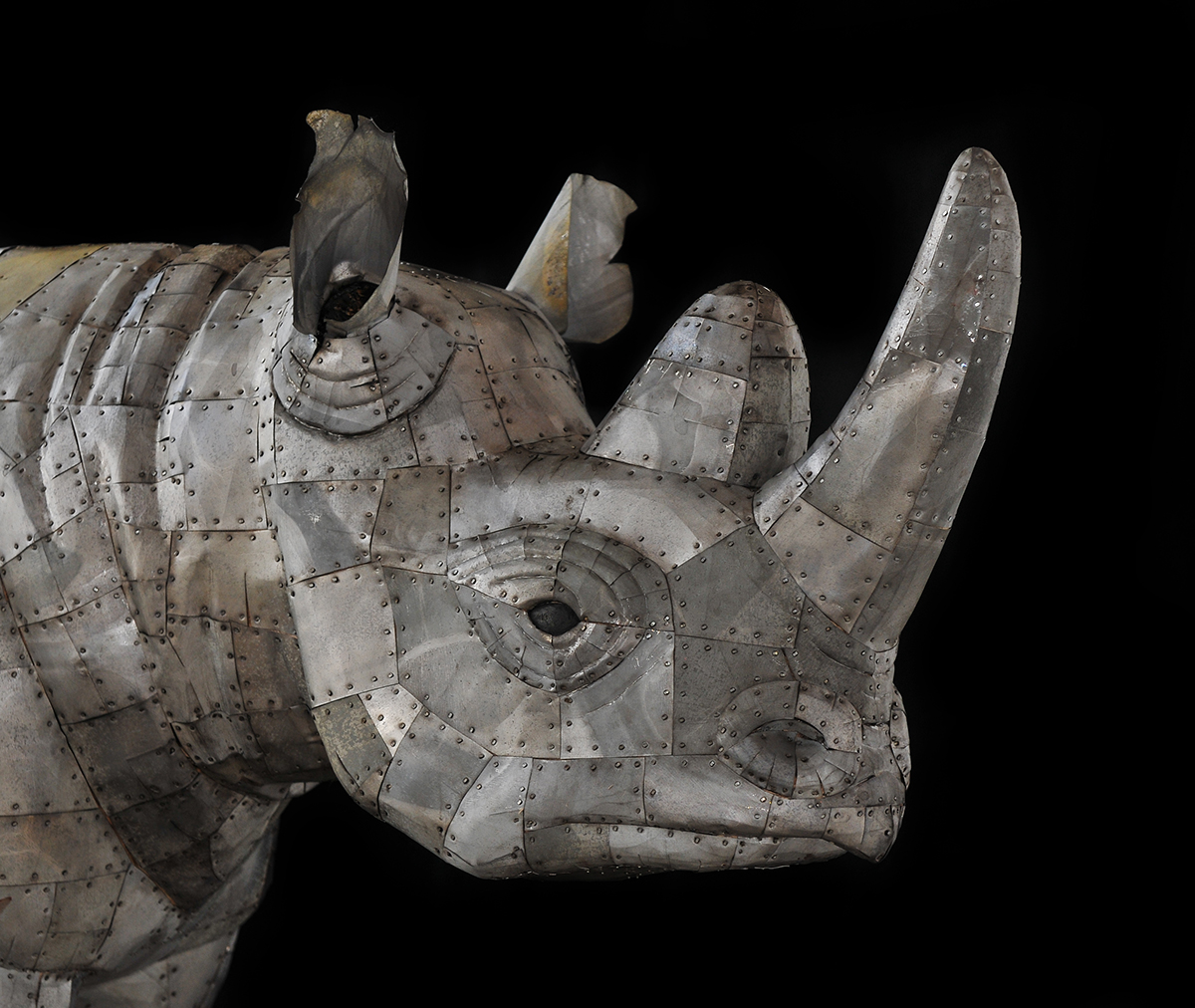 Black Rhino (detail)